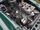 MGC GTS Sebring/MGB Historic Racer